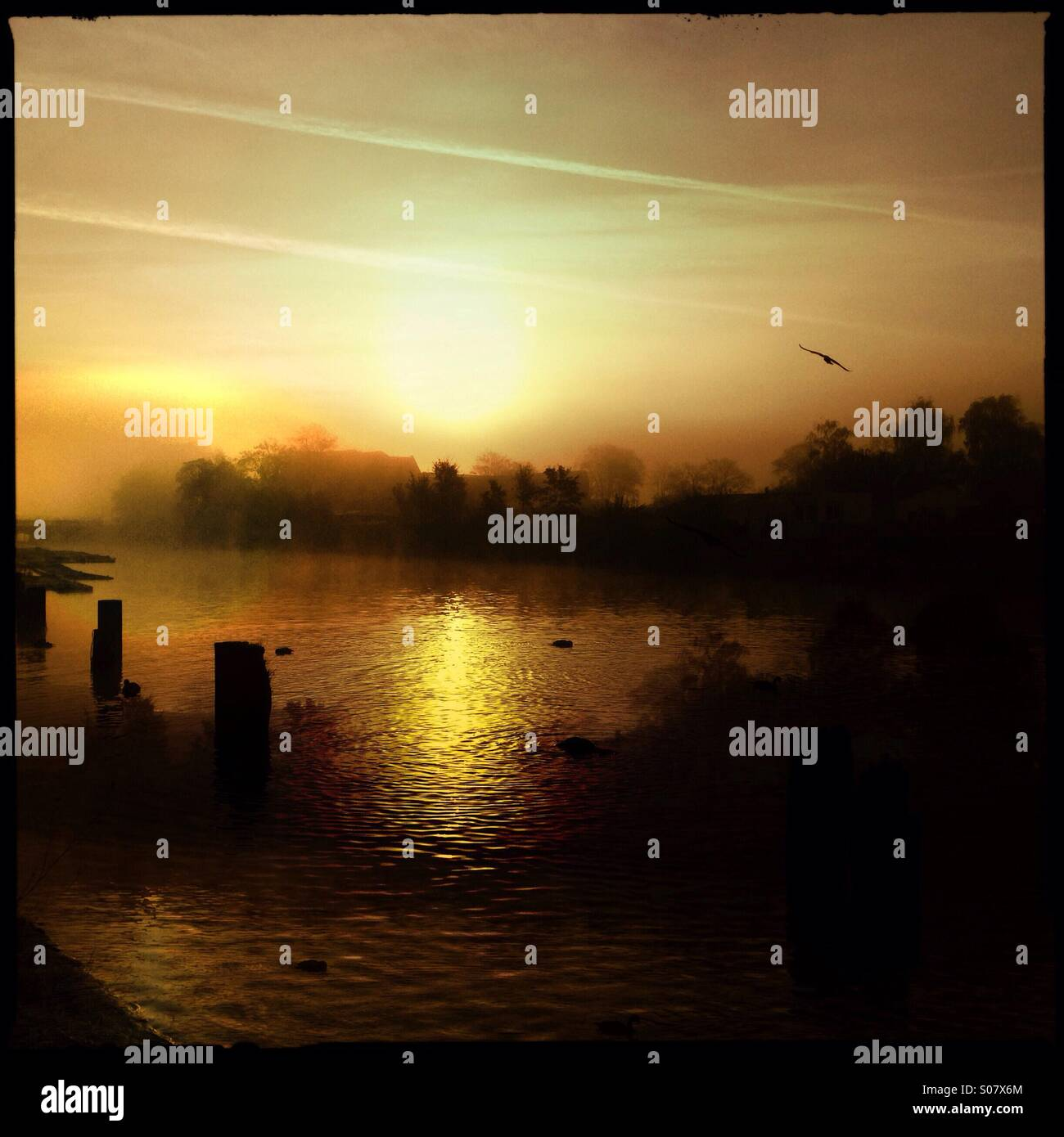 Sunrise with sea fog - Stock Image