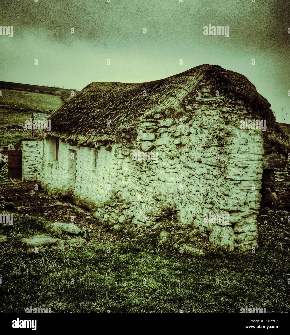 Derelict crofter's cottage - Stock Image