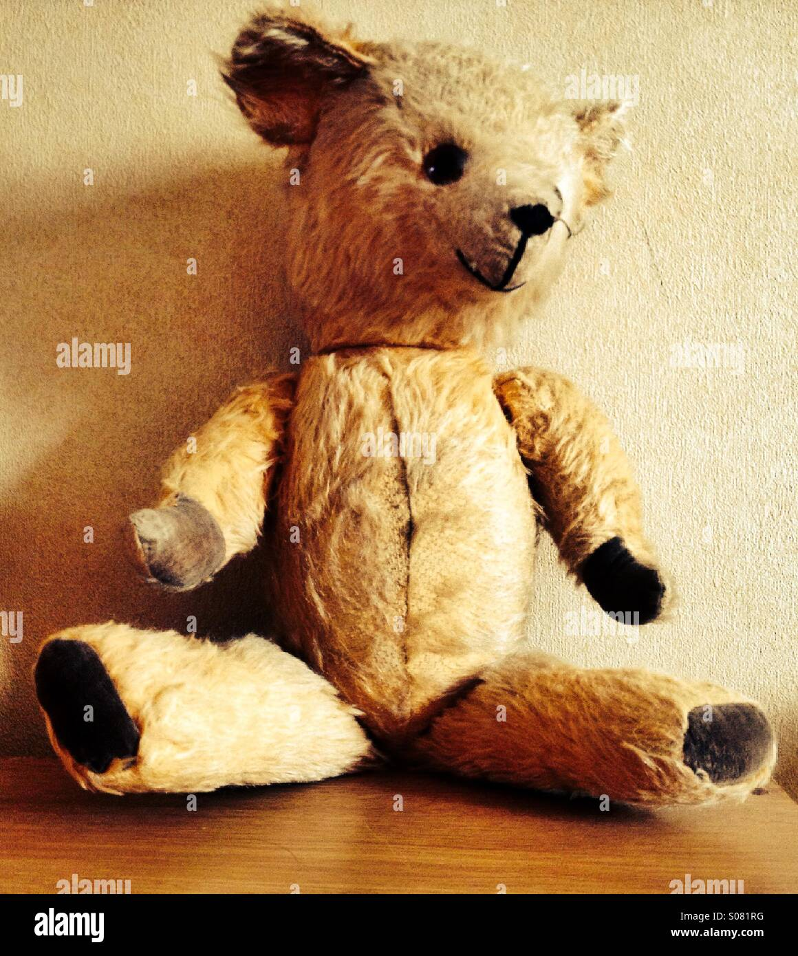 Old teddy bear - Stock Image