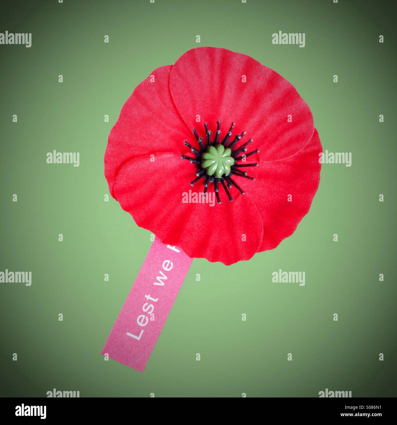 Remembrance Day red poppy with lest we forget tag attached. Green background. - Stock Image