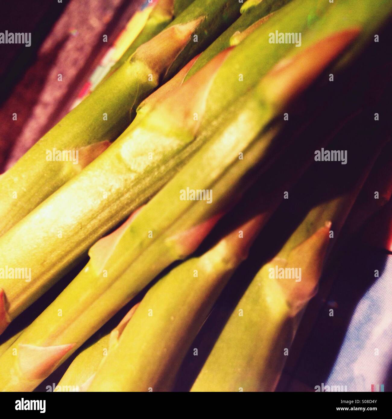Close up of asparagus stems - Stock Image