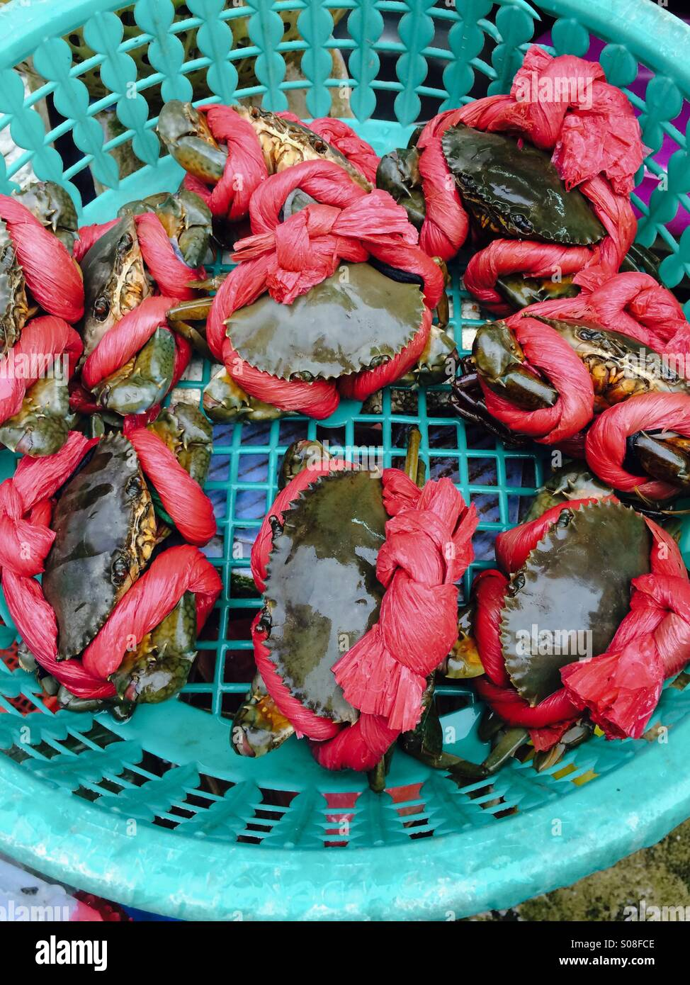 Fresh Crabs on sale at Ben Thanh Market in Ho Chi Minh City - Stock Image