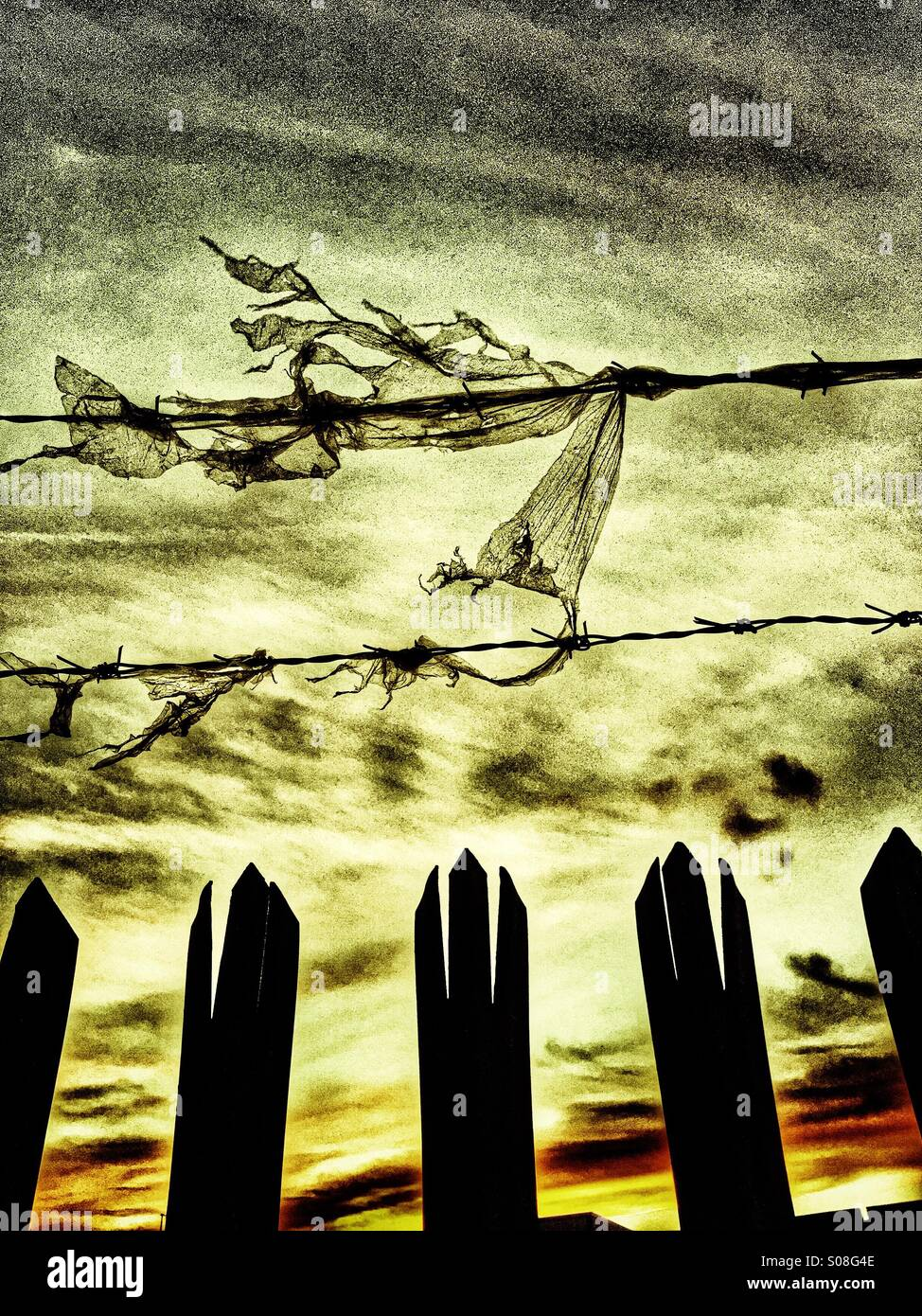 Barbwire and metal fence at sunset - Stock Image