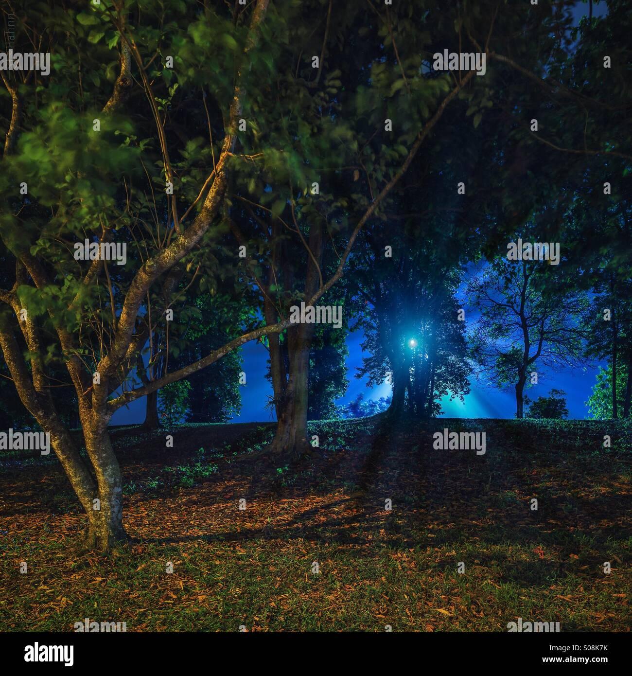 Blue light - Stock Image
