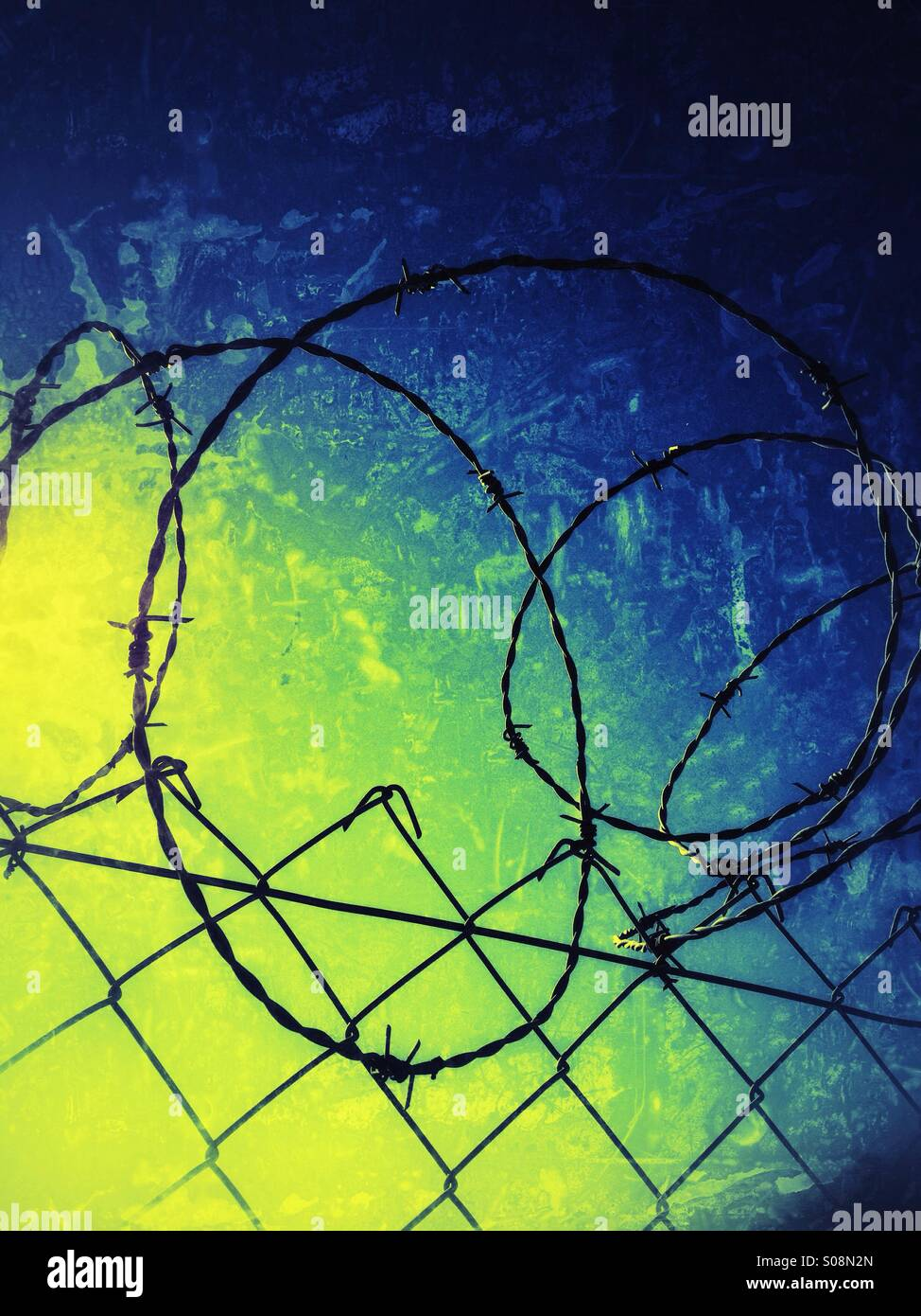 Loops of barbed wire on top of chain wire fence. - Stock Image