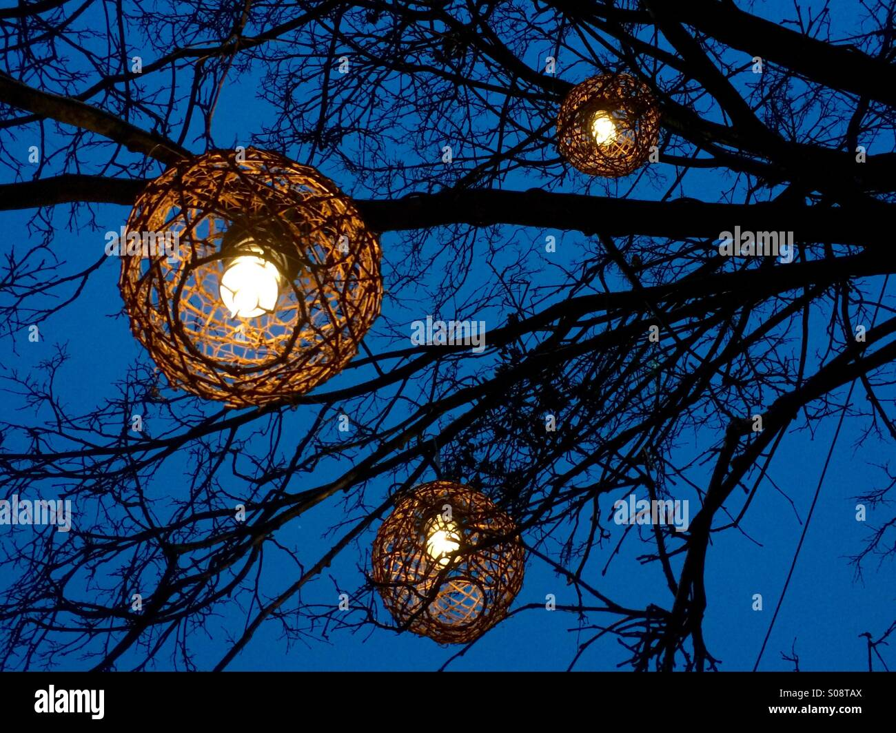Lanterns Hanging Tree Branch High Resolution Stock Photography And Images Alamy