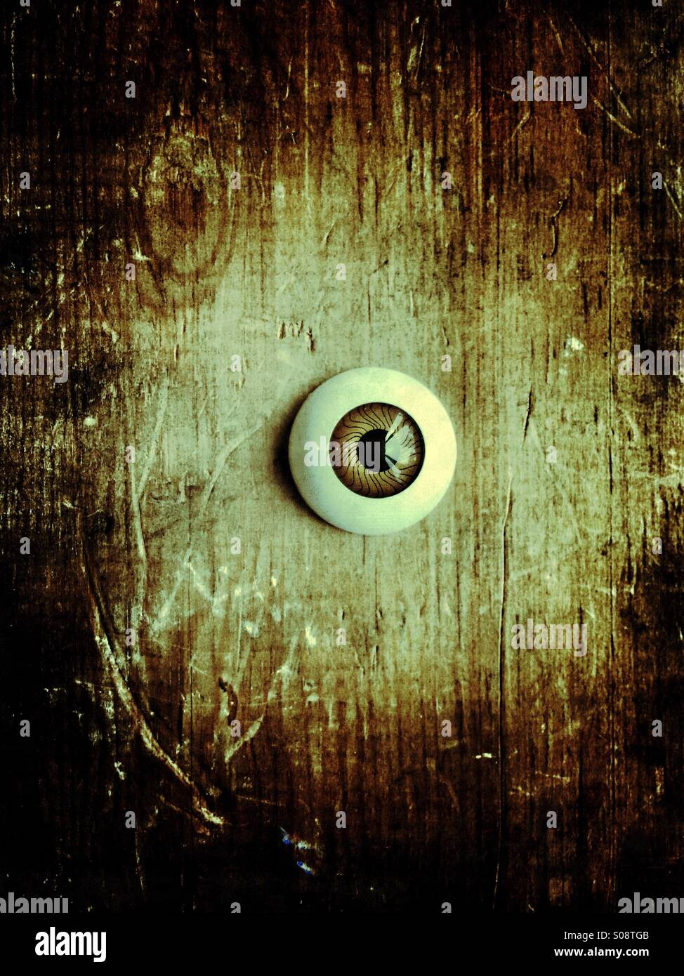 Plastic eye - Stock Image