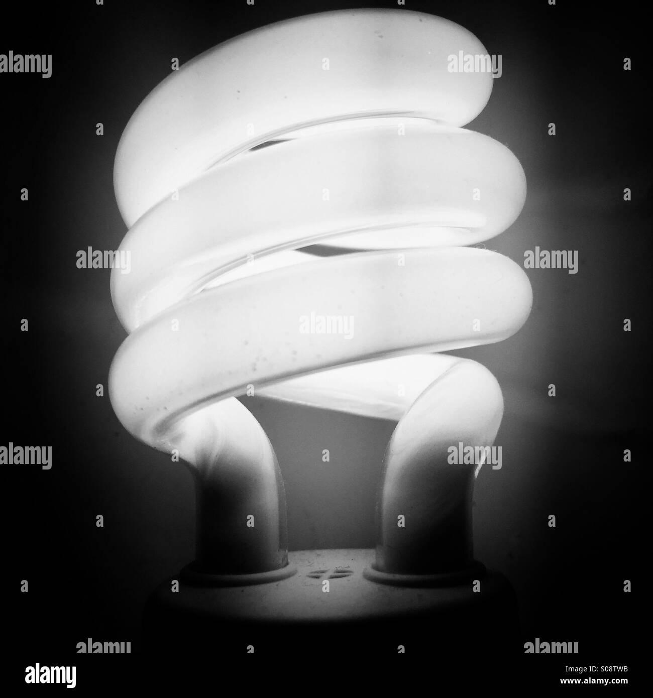 Energy efficient light bulb - Stock Image