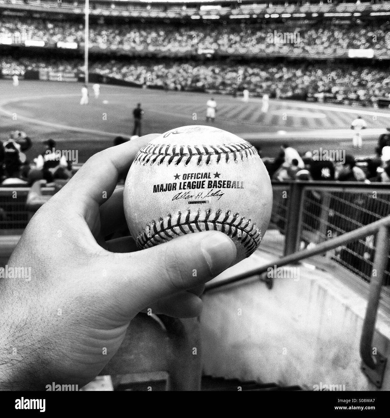 Foul ball at Yankee stadium in the Bronx, NYC - Stock Image