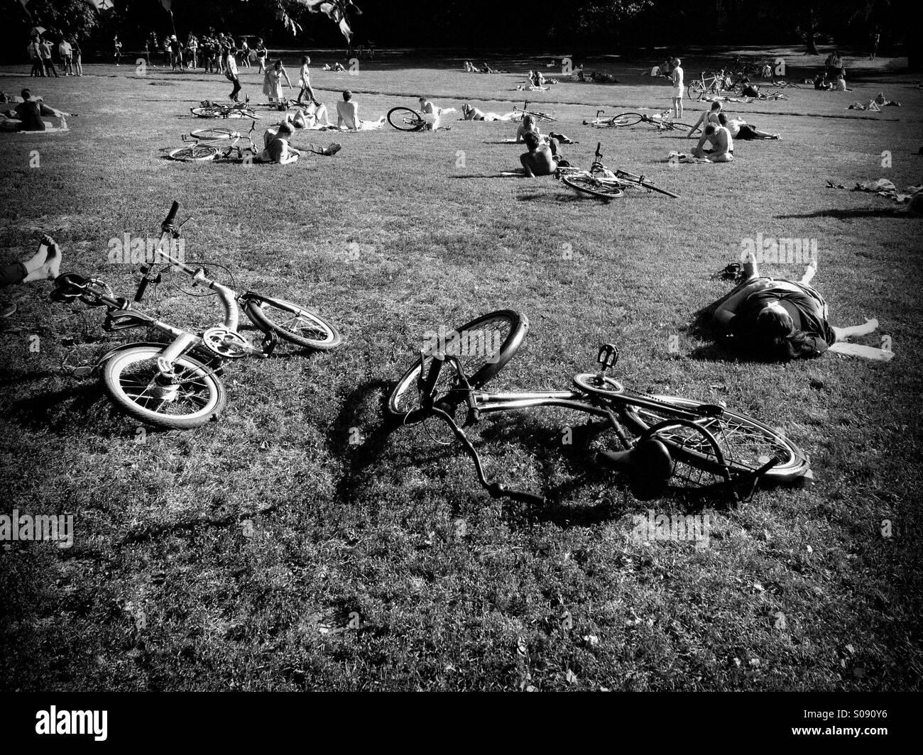 People  sunbathing in the park, Berlin,Mitte - Stock Image