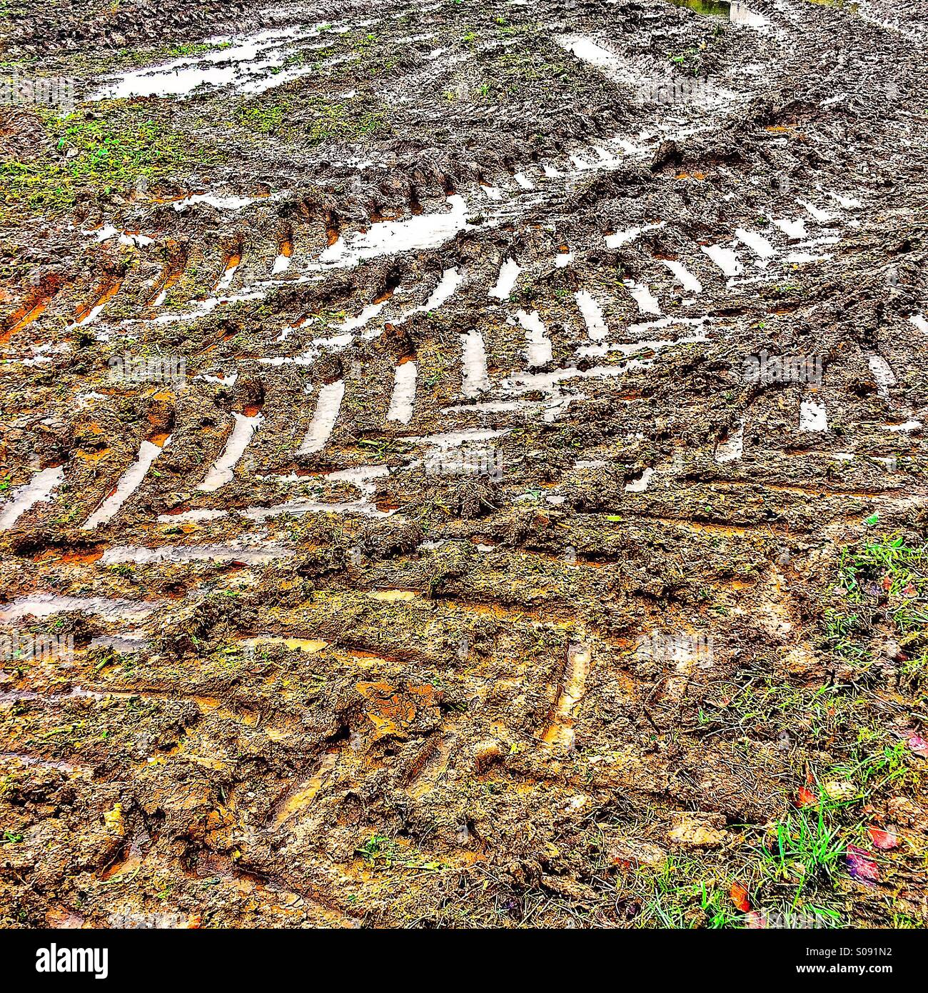 Tractor tyre tracks on muddy field - Stock Image