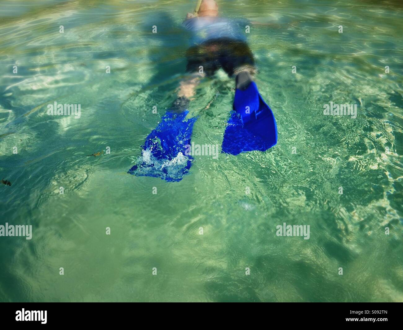 Snorkeling in Belize, South Water Caye - Stock Image