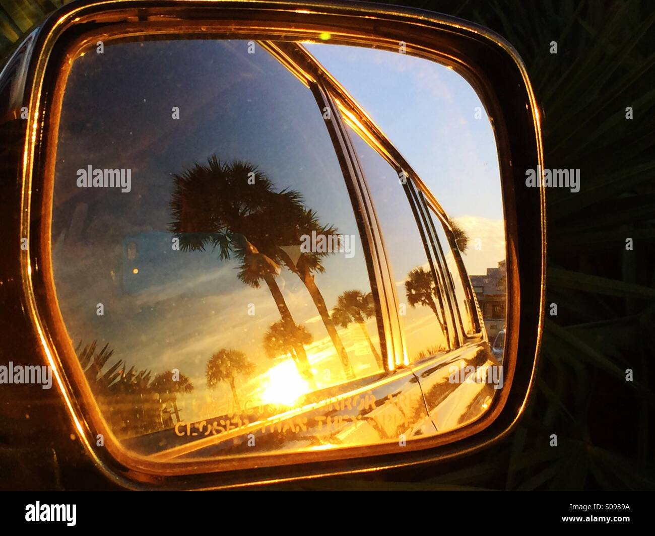 Palmetto trees are viewed in the rearview mirror of a car at sunset. - Stock Image