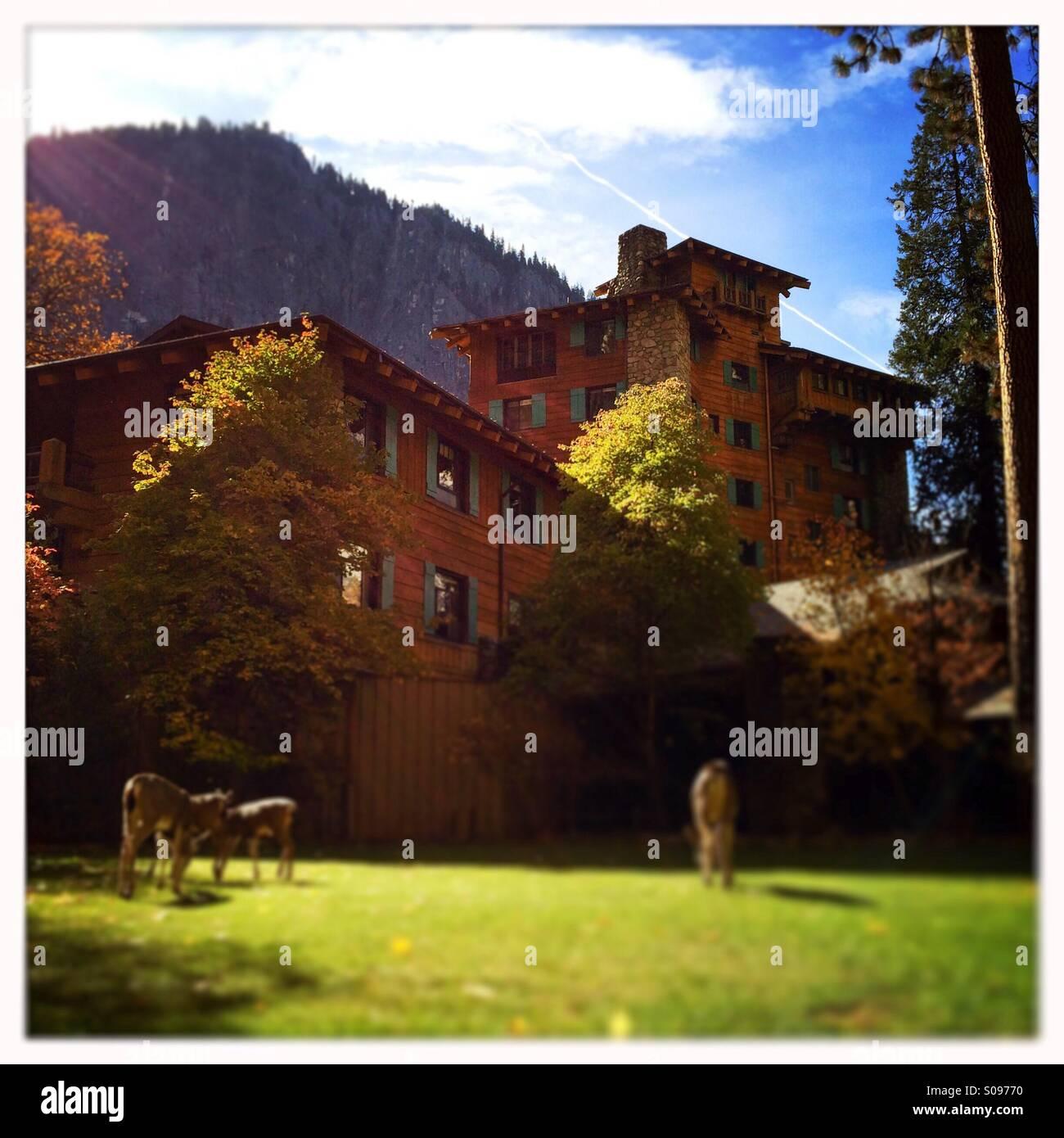 Ahwahnee Hotel Kitchen Yosemite California: Ahwahnee Stock Photos & Ahwahnee Stock Images