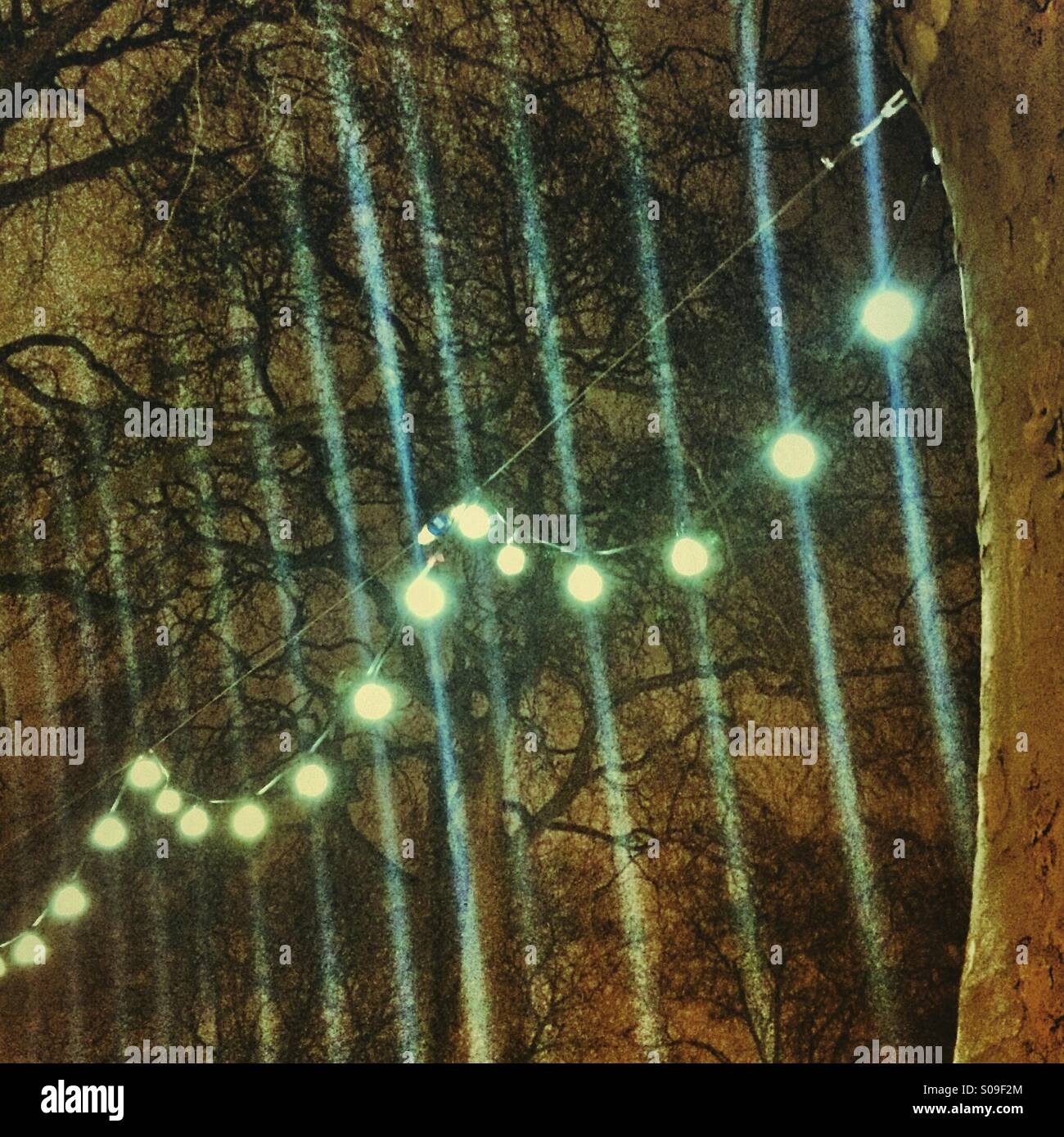 Christmas Lights glowing in Hoxton Square, London - Stock Image