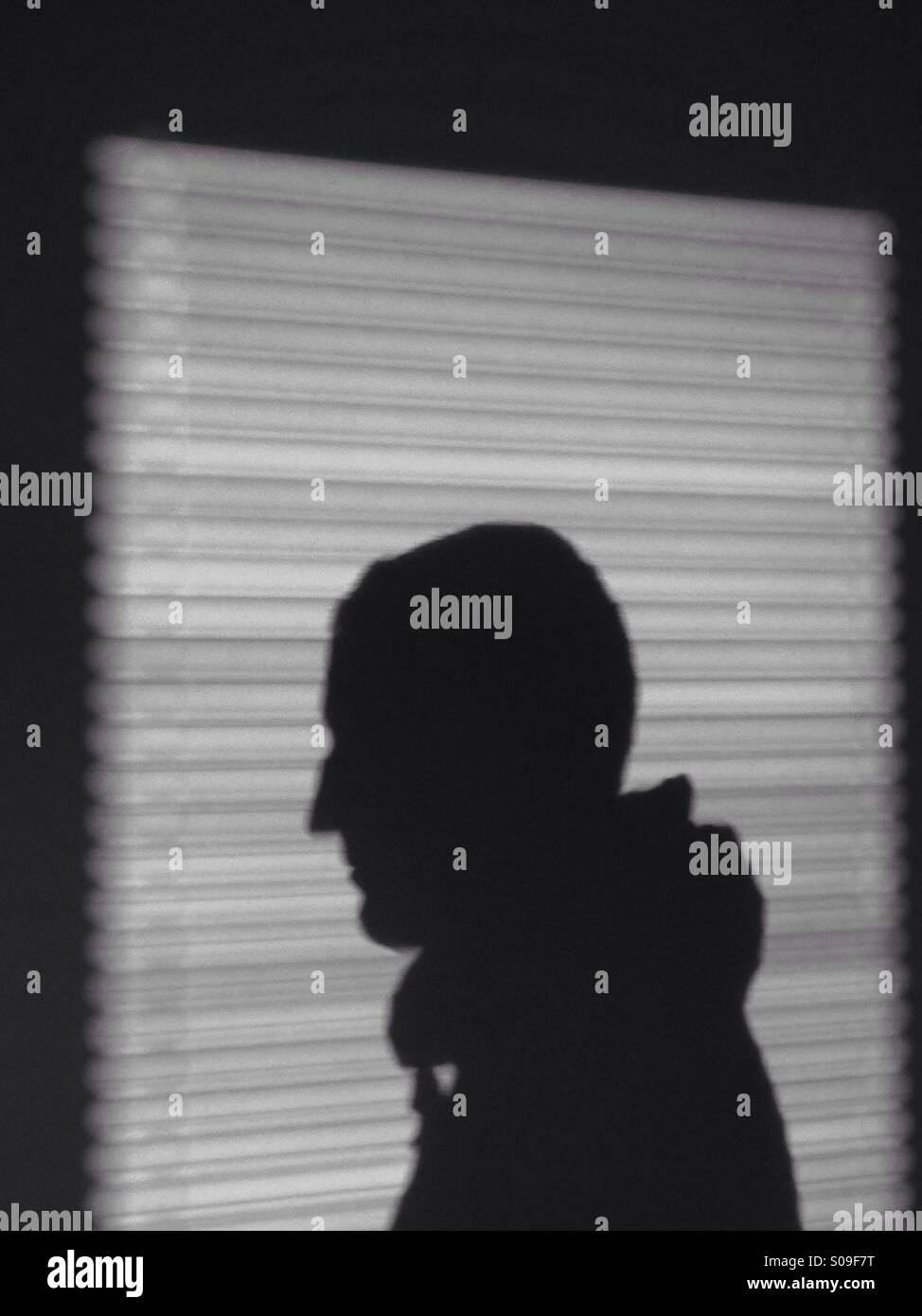 Shadow Silhouette Of A Man Window Blinds Stock Photo 309996172