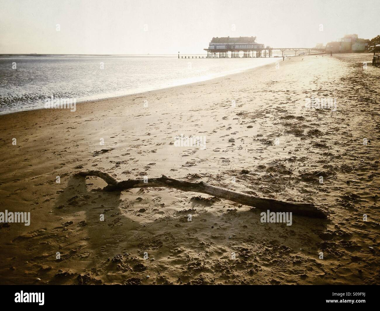 Driftwood washed up on a sparsely populated sandy beach at the seaside Cleethorpes the Pier landmark in the background. - Stock Image