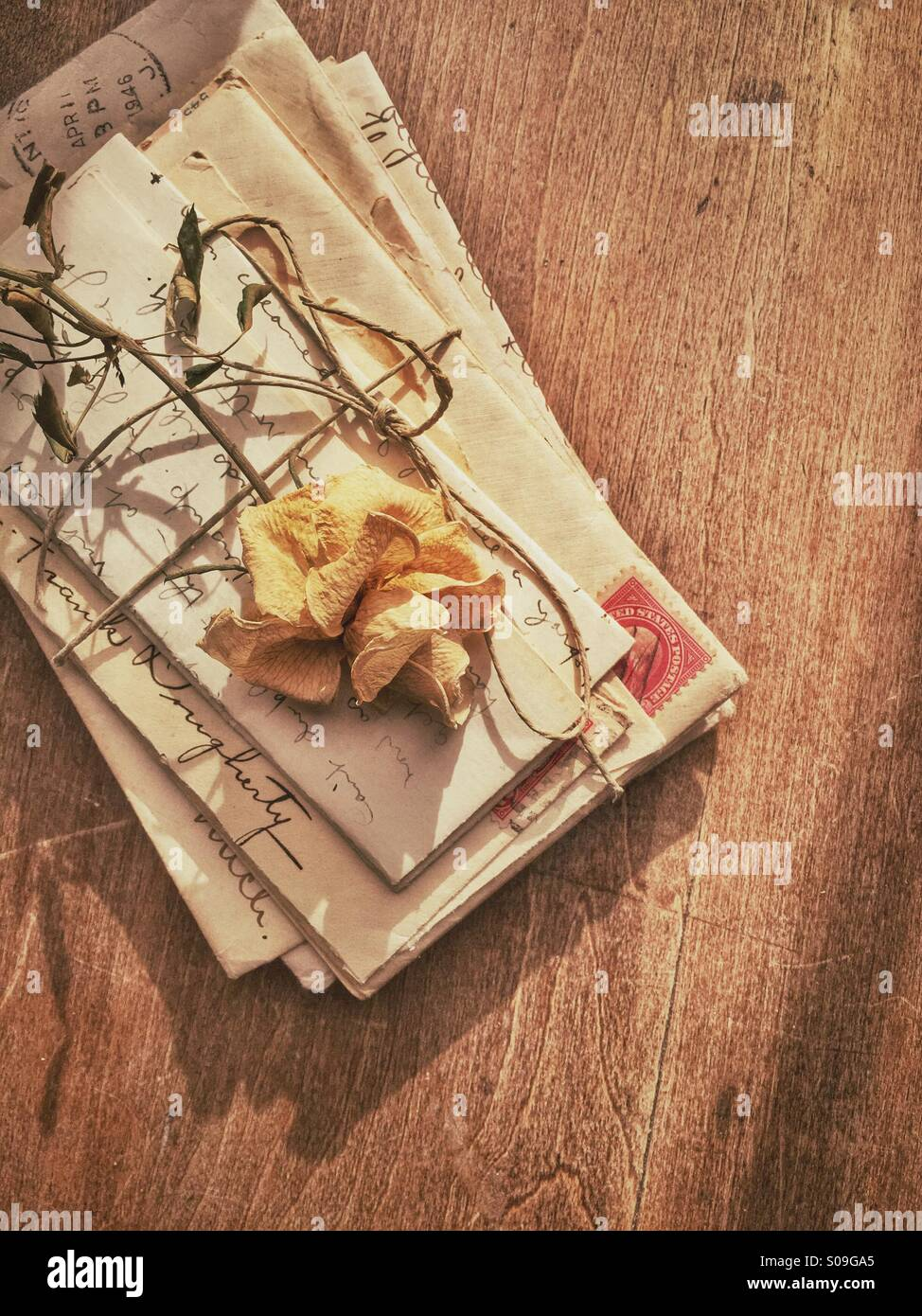 Dried rose on old love letters. - Stock Image
