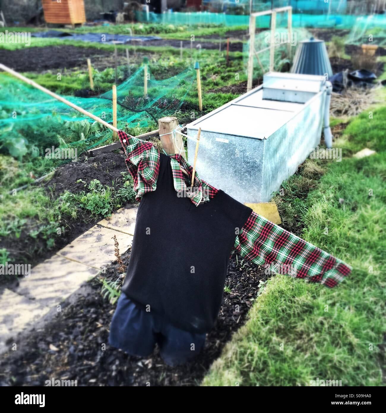 Tatty scarecrow on allotment garden Stock Photo
