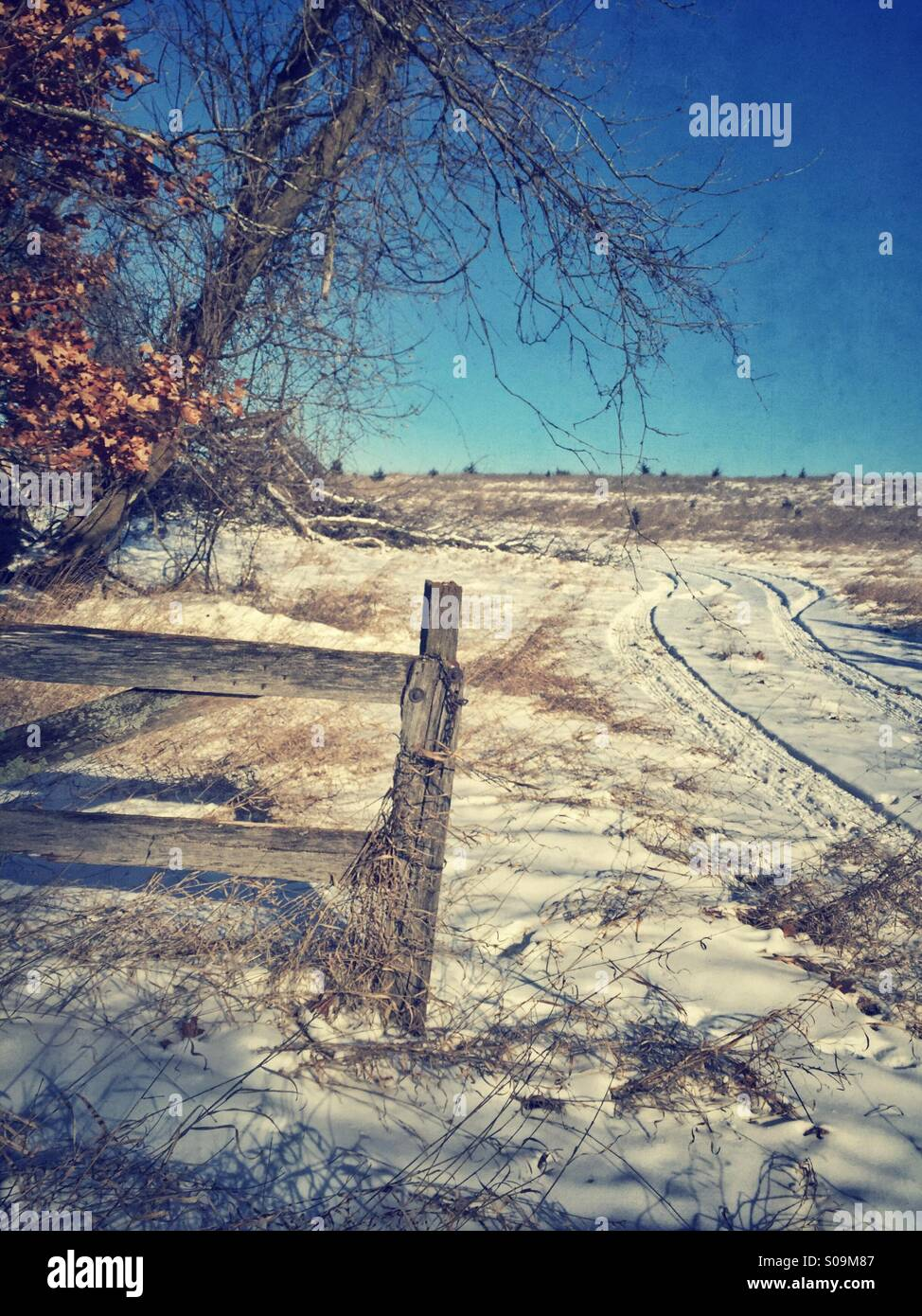 Rustic fence in winter. - Stock Image