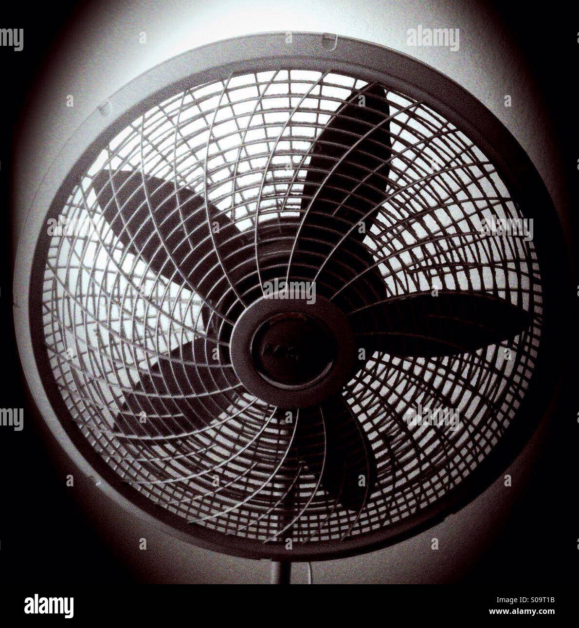 Photo of my fan that I edited:) - Stock Image