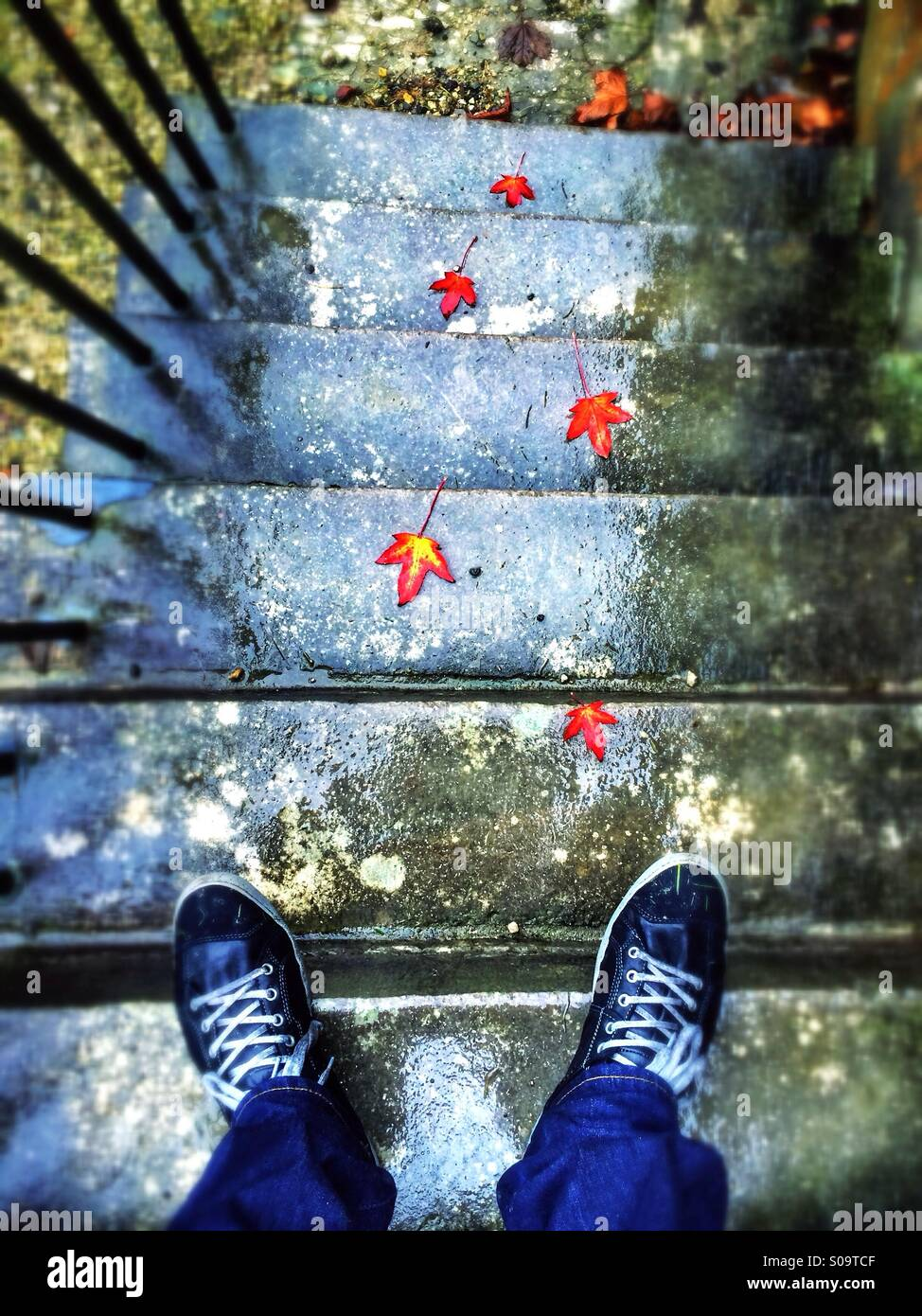 Downward view of a man standing at the top of a set of rain soaked steps, his feet in view. Leading up the steps - Stock Image