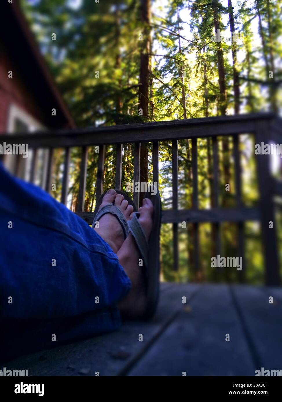 A man's feet crossed while sitting on a deck in a forest. - Stock Image