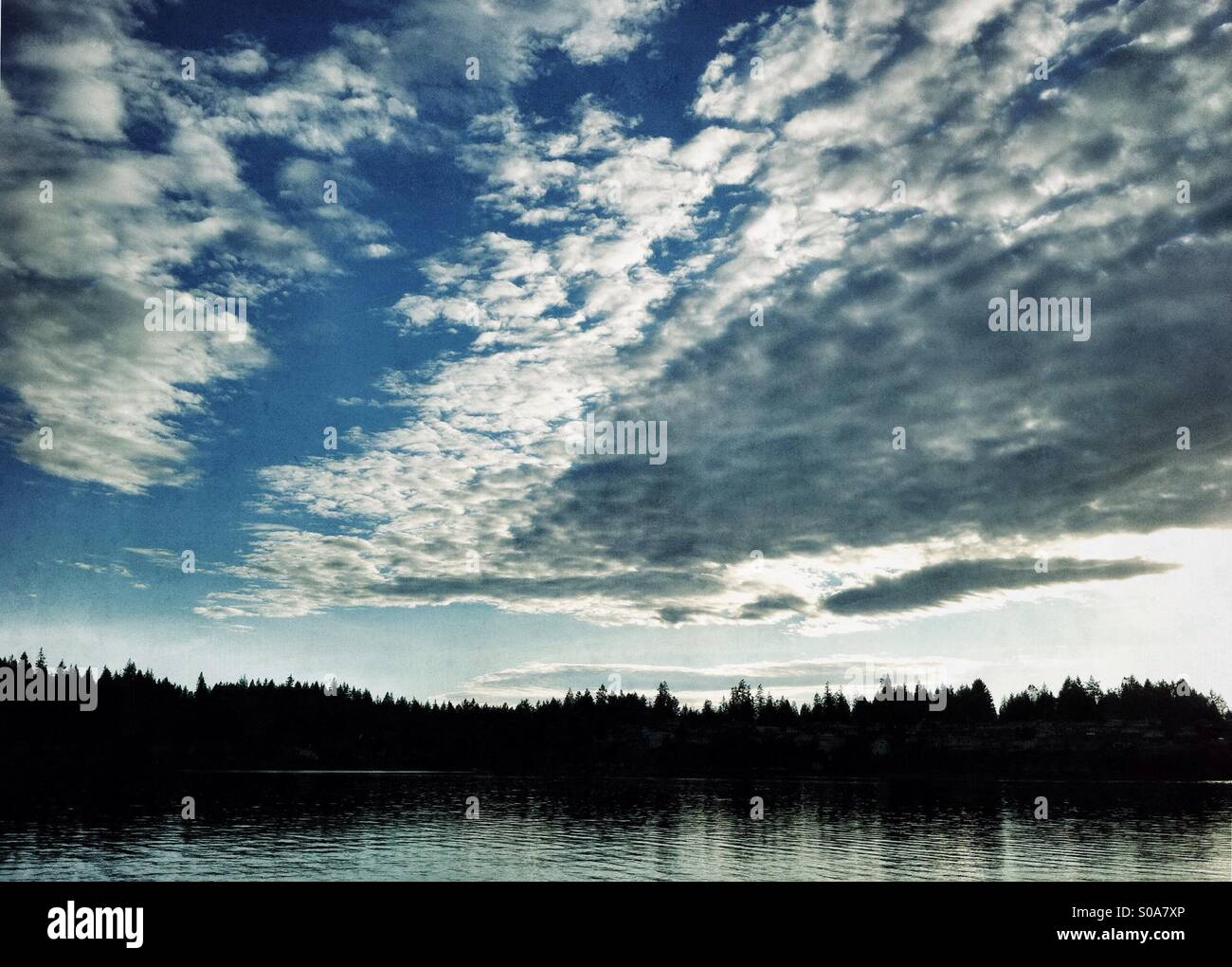 Cloudy sky over evergreen forest and body of water - Stock Image