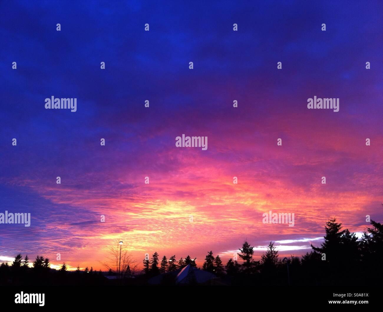 Magenta sunset - Stock Image