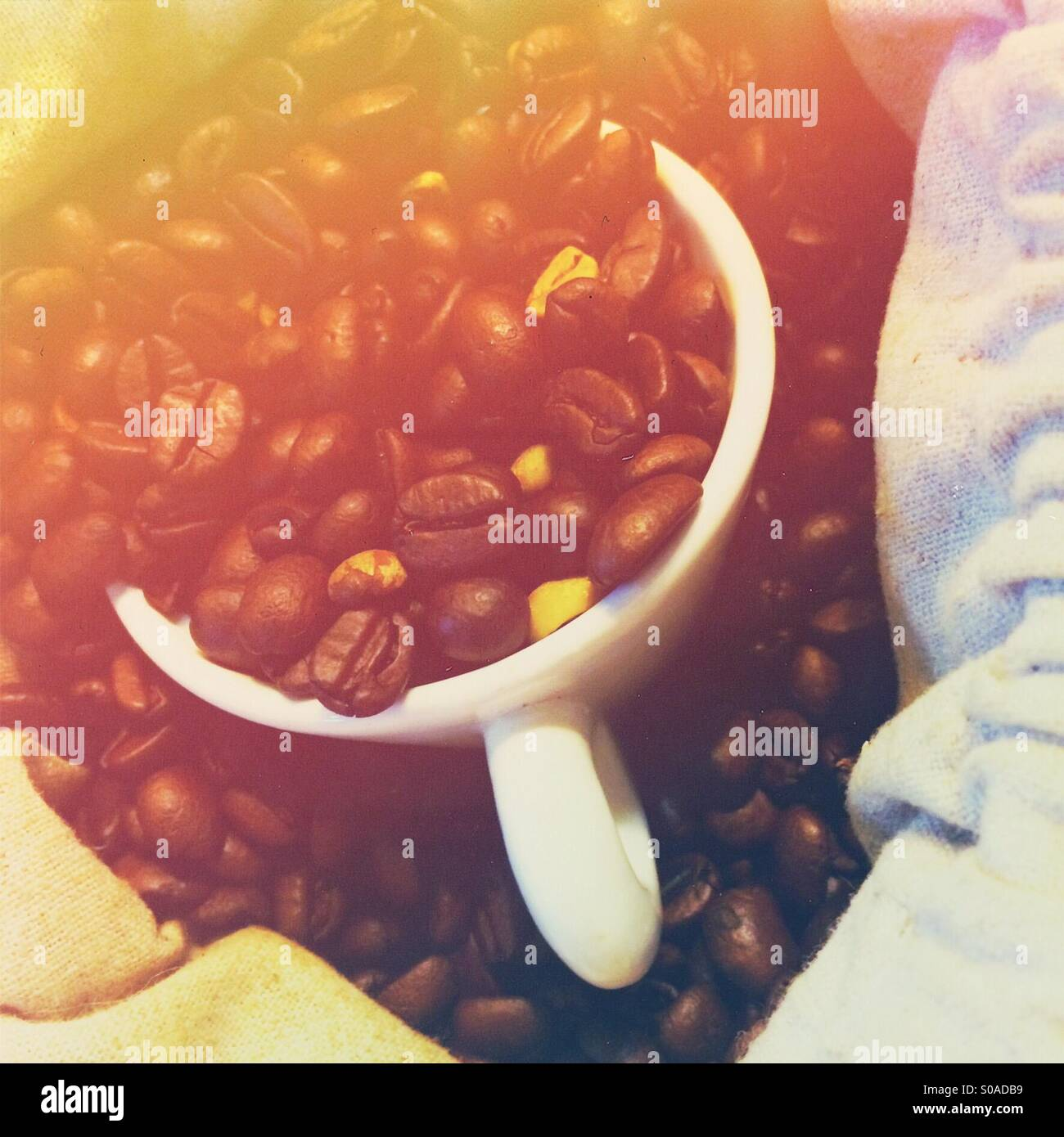 Small coffee espresso cup in a sack of raw coffee beans Stock Photo