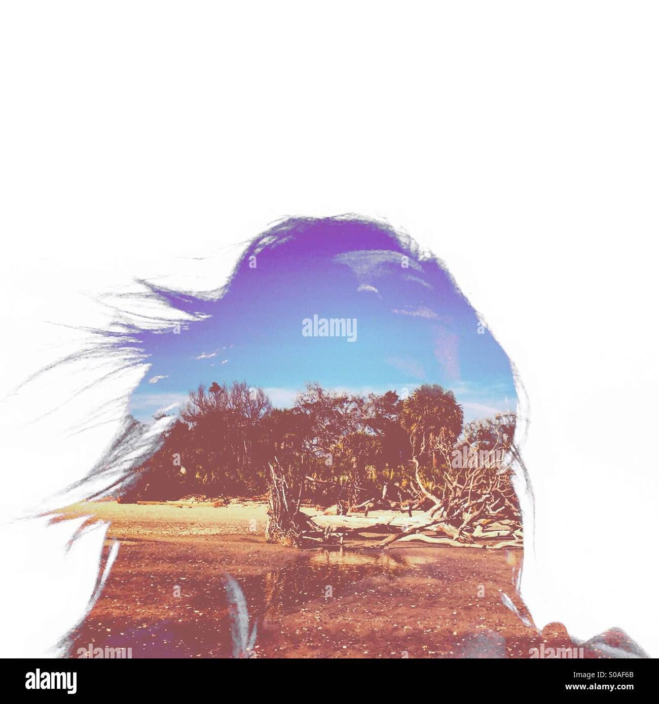 A double-exposure of a woman with long hair and a beach create an artistic silhouette. - Stock Image