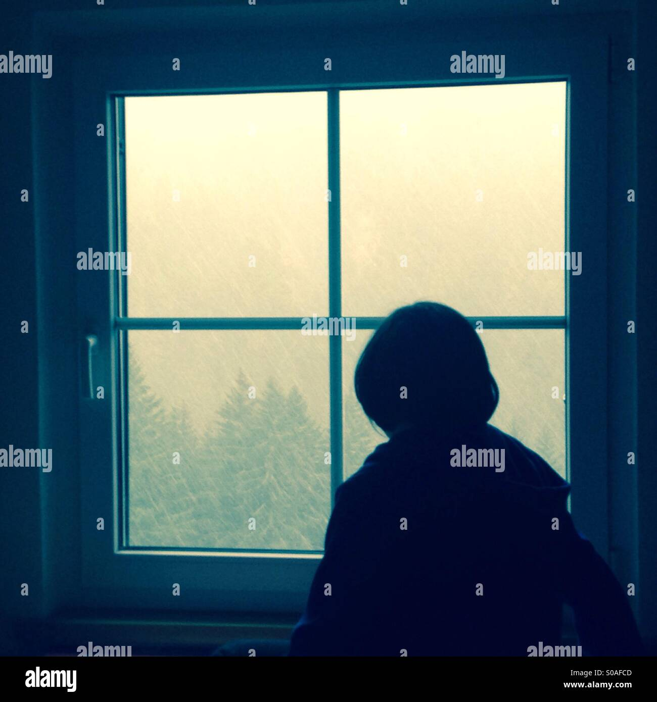 Looking through the window - Stock Image