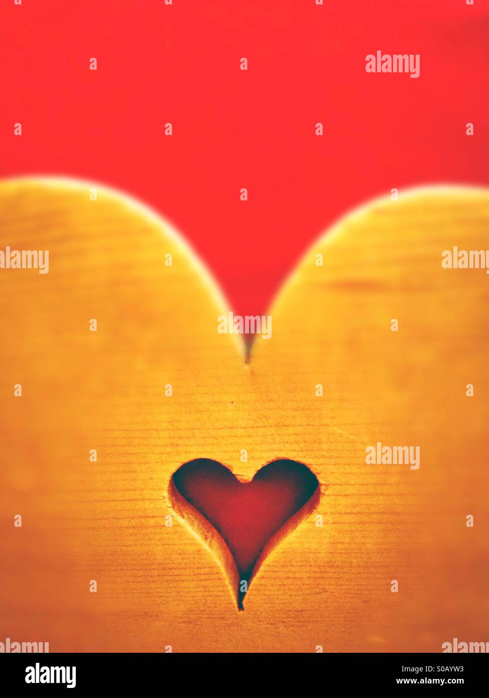 Heart - Stock Image