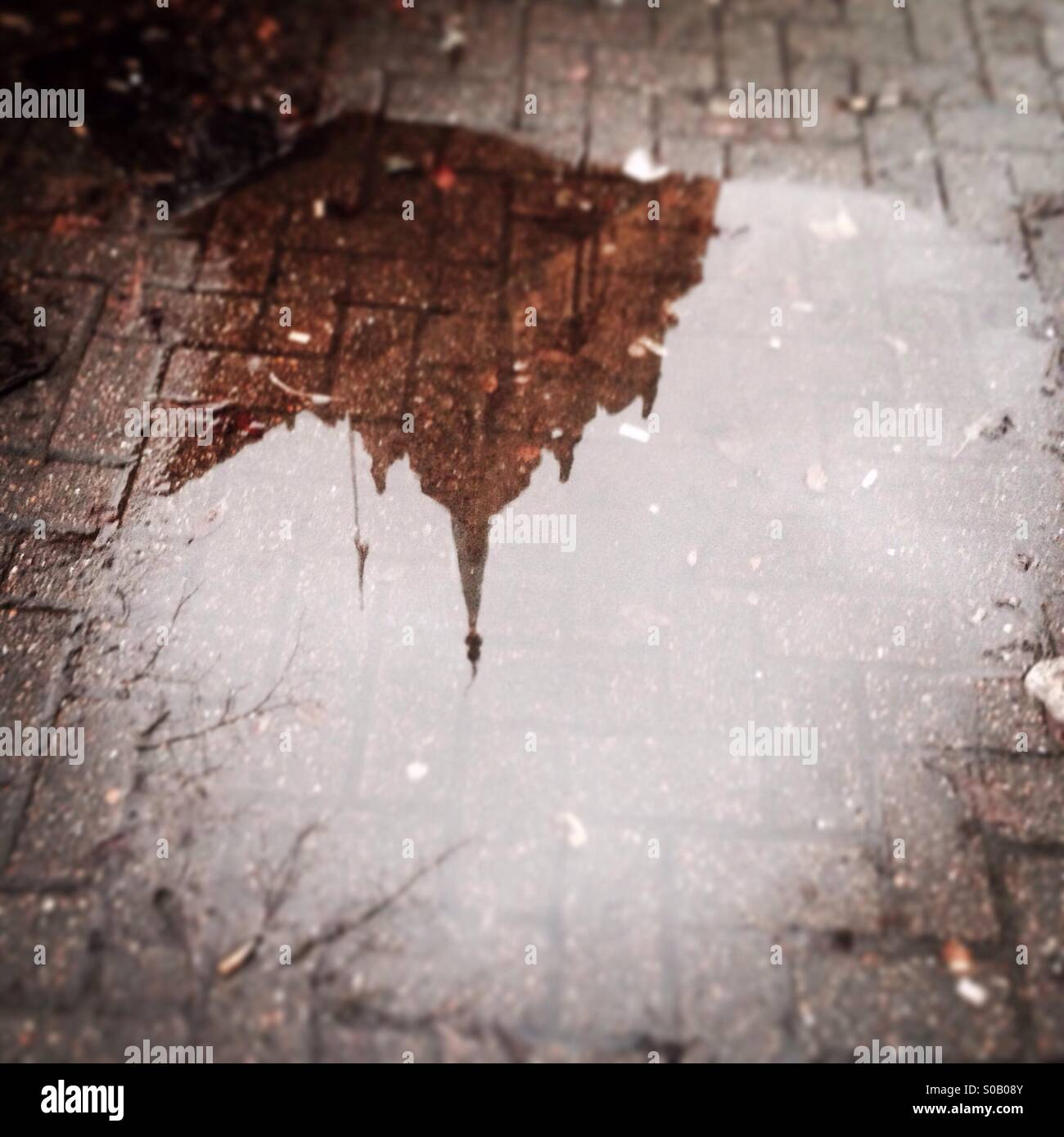 Chelmsford cathedral reflected in puddle - Stock Image
