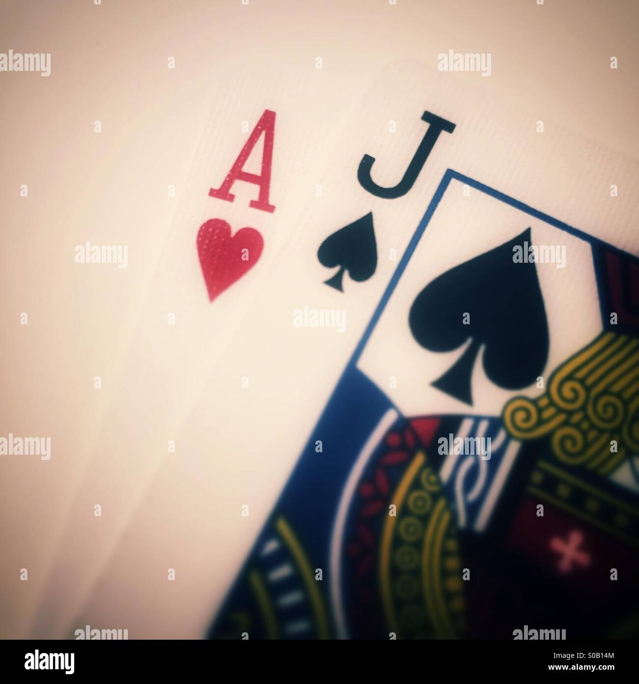 Blackjack - Stock Image