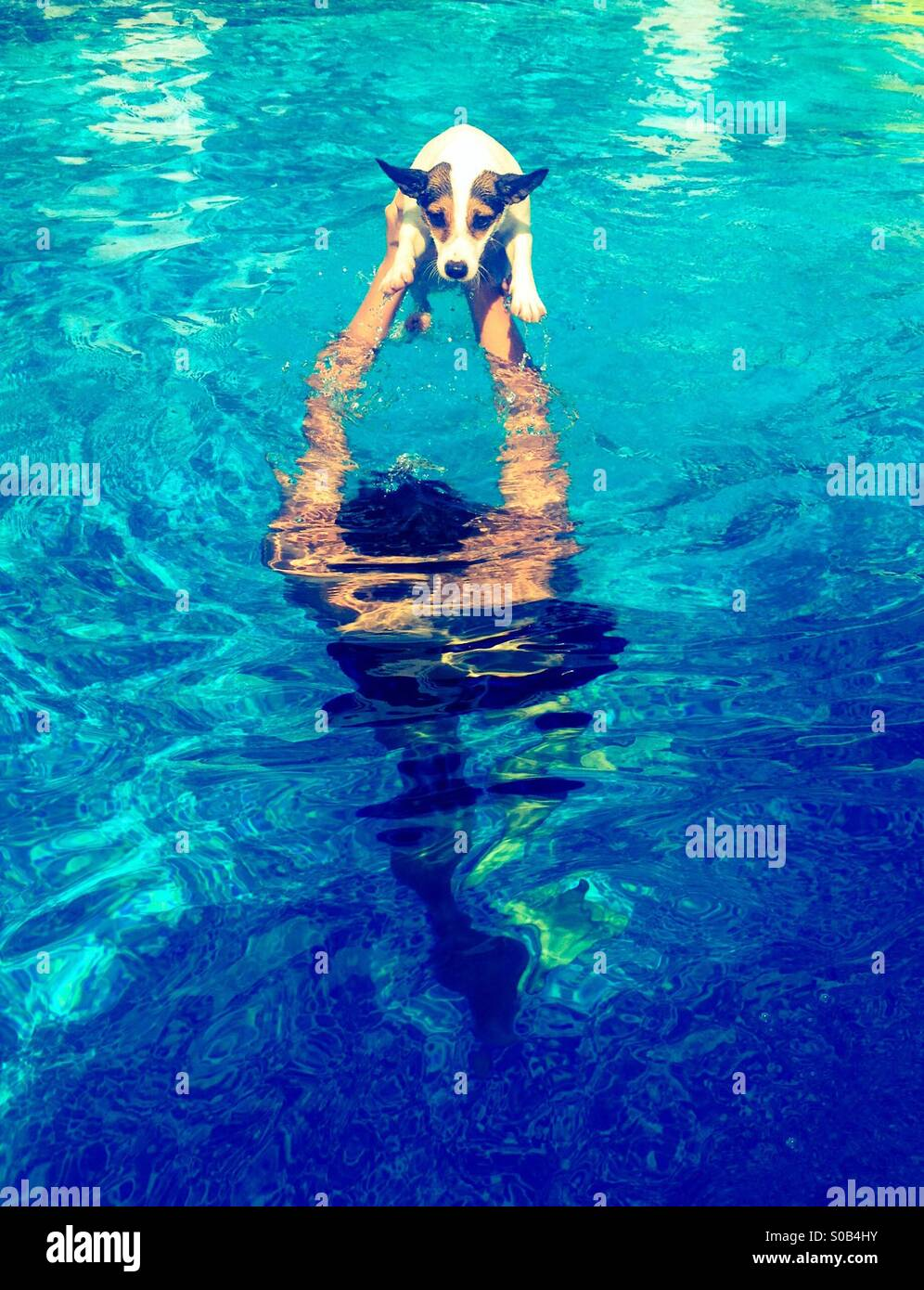 Water play; teenage boy playing in the swimming pool with his dog. - Stock Image
