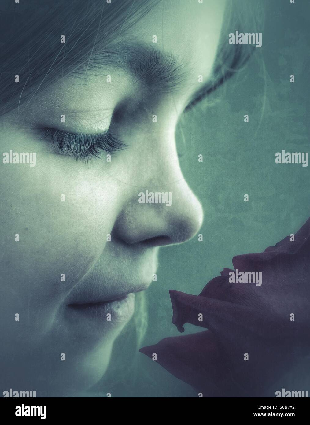 Youth with Rose - Stock Image
