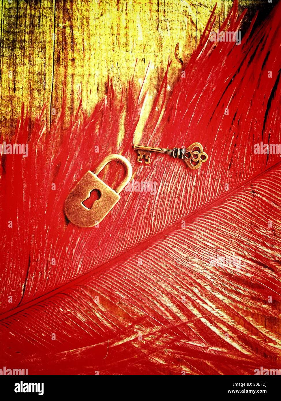 Lock and key over a red feather - Stock Image