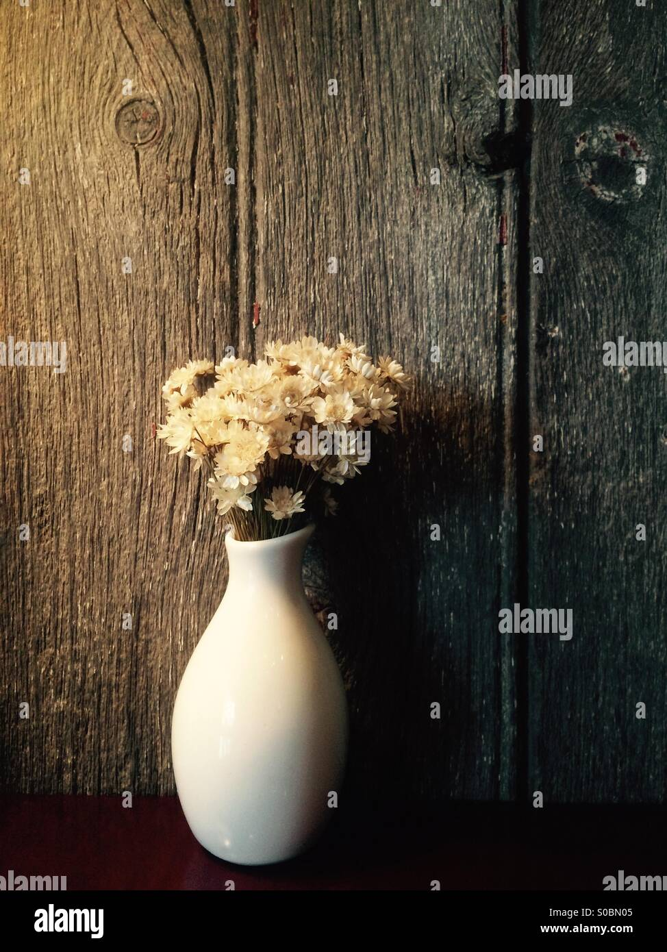 Flowers against a barn-wood wall - Stock Image