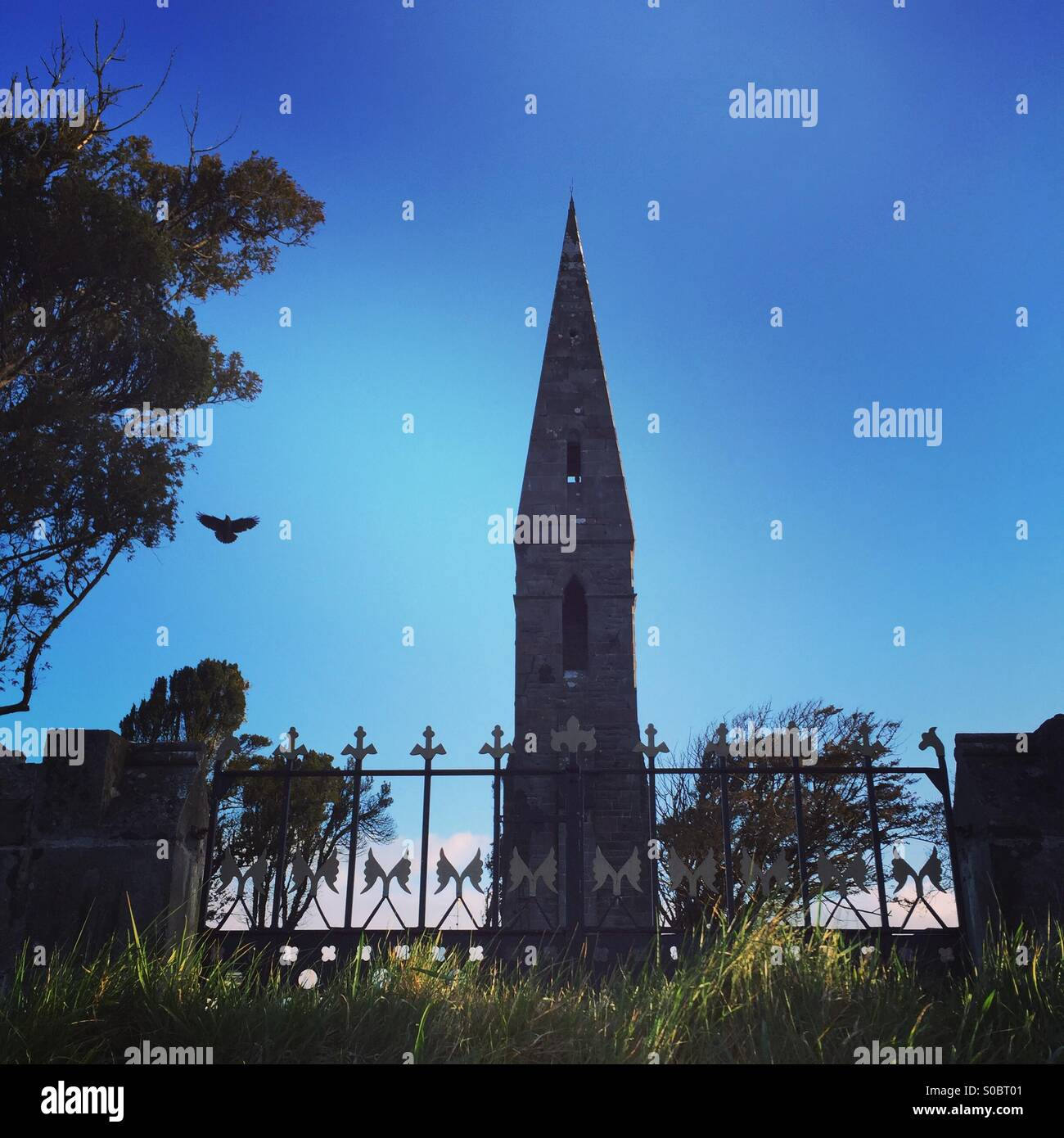 A crow flies by an old church spire in Balla, - Stock Image