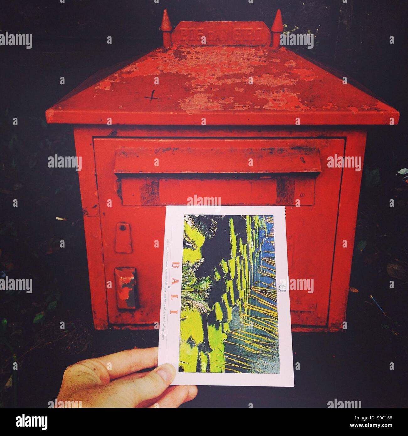 Posting a postcard trough a red mailbox - Stock Image