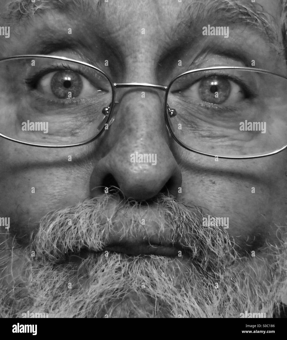 White male, age 64, close-up of bearded, aging face, Model Released, black and white - Stock Image