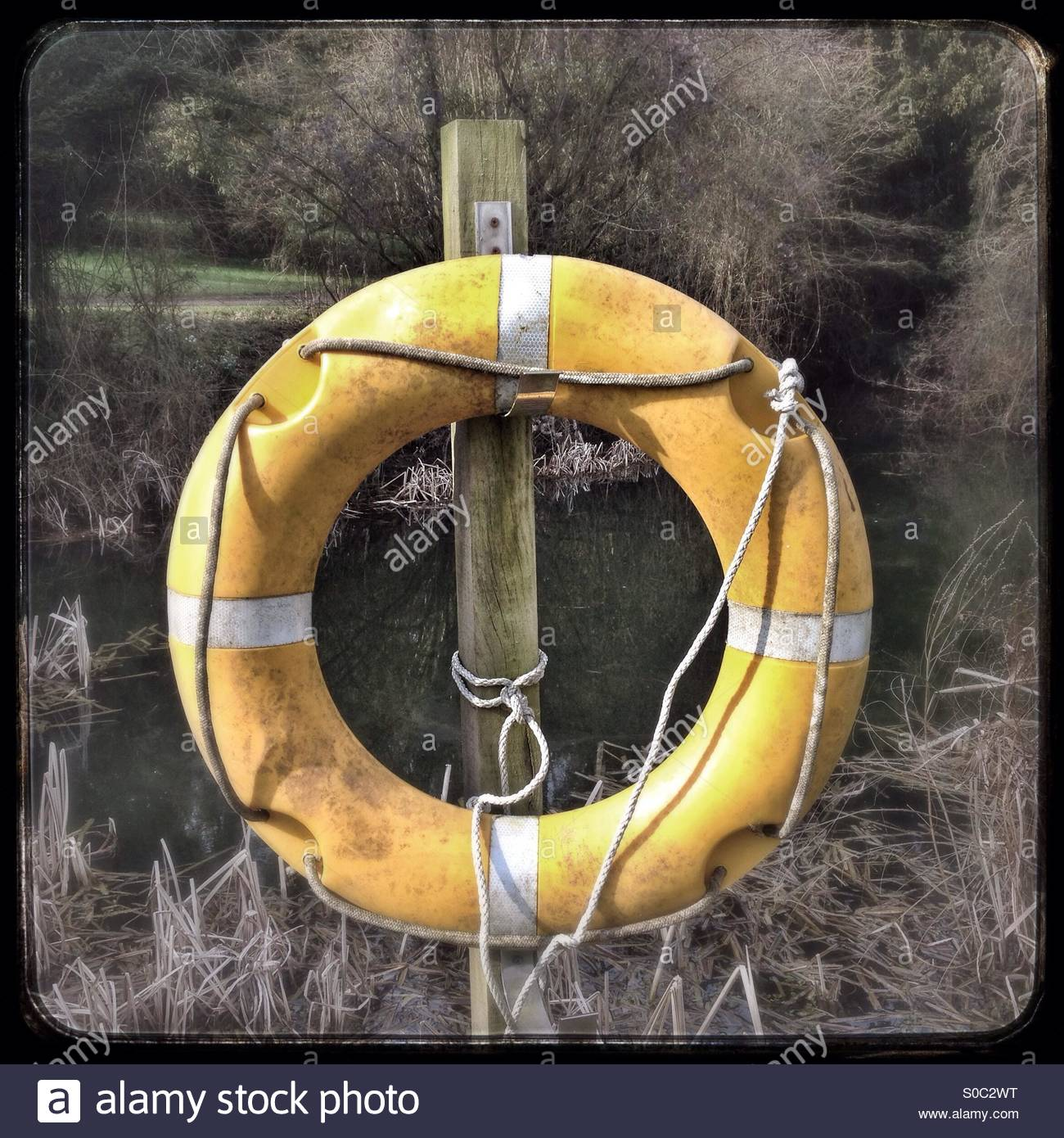 Yellow life saver rubber ring by a lake. - Stock Image