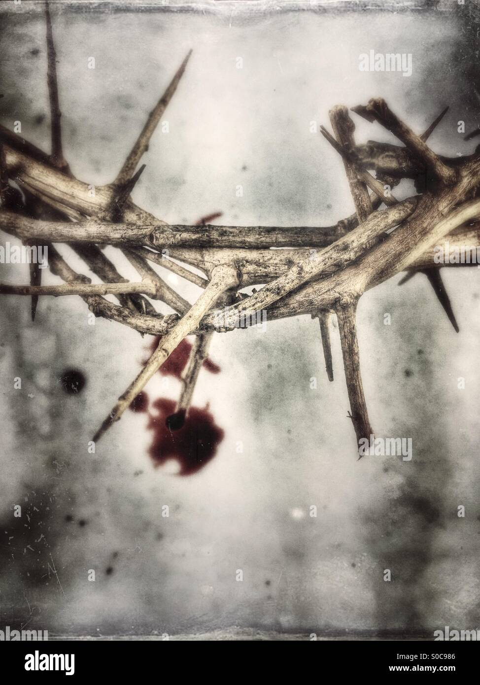 Crown of thorns with blood. - Stock Image