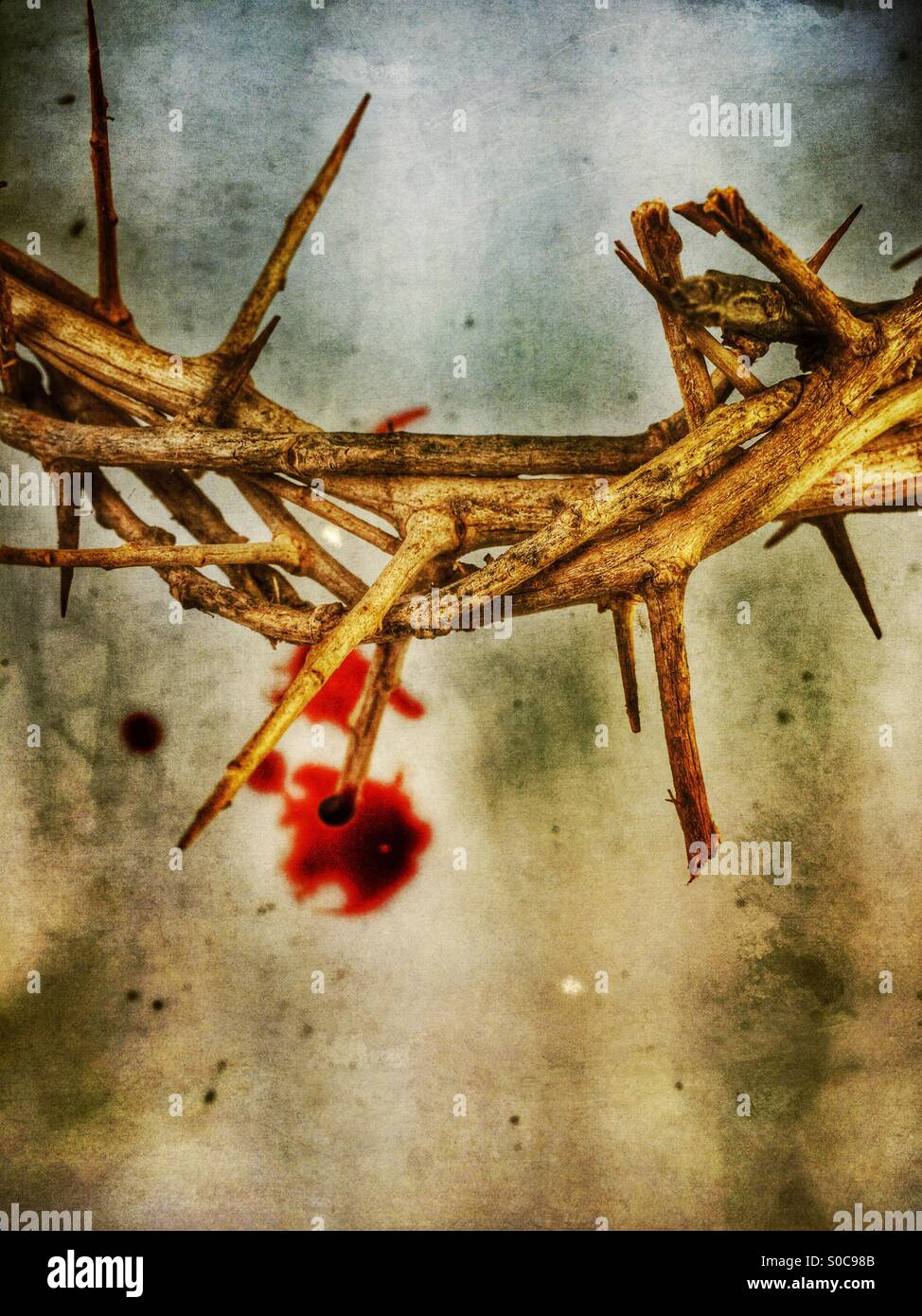 Crown of thorns with blood drops. - Stock Image