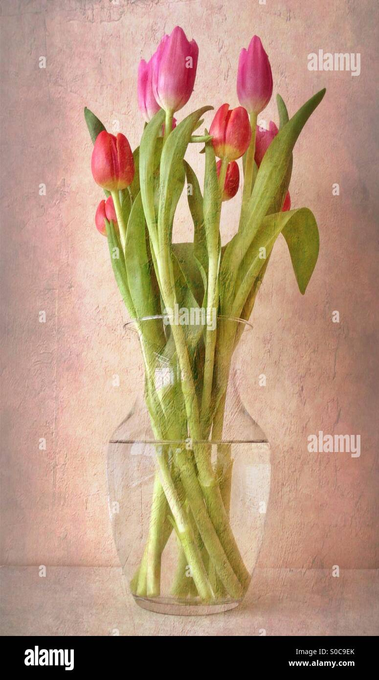 Pretty Red Flowers Textured Effect Stock Photos Pretty Red Flowers