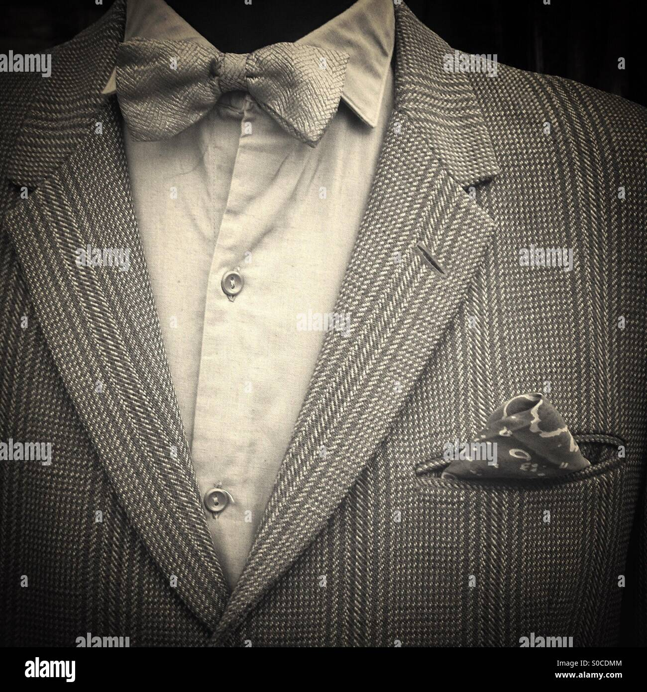 Manikin with bow tie and tweed jacket - Stock Image