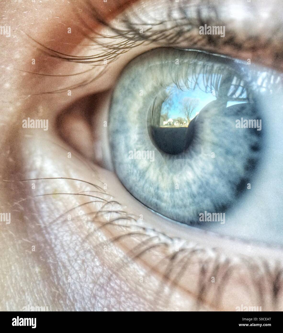 Macro photo of a child's eye reflecting the scene he is looking at - Stock Image