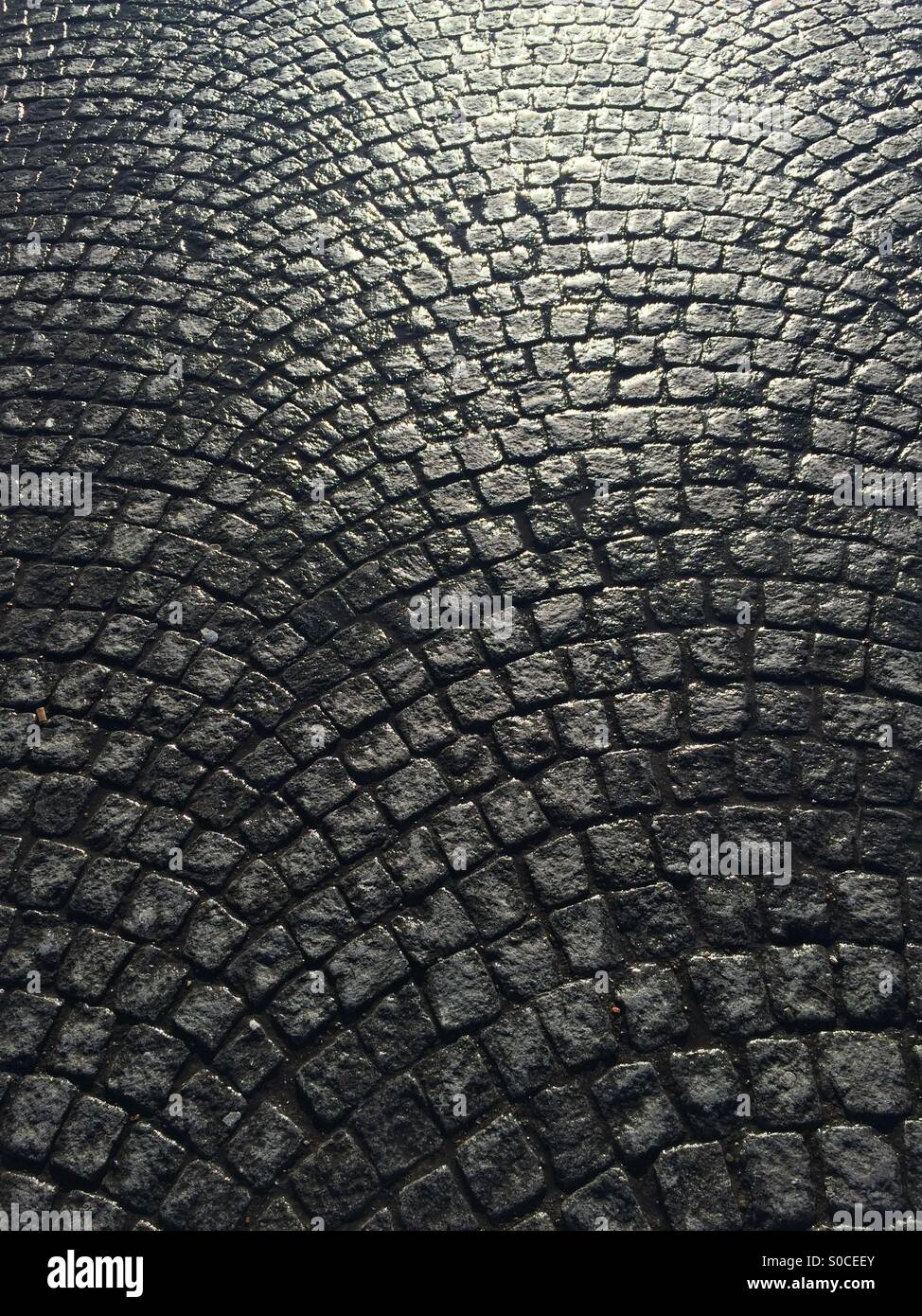 Cobblestone pavement after the rain has gone - Stock Image