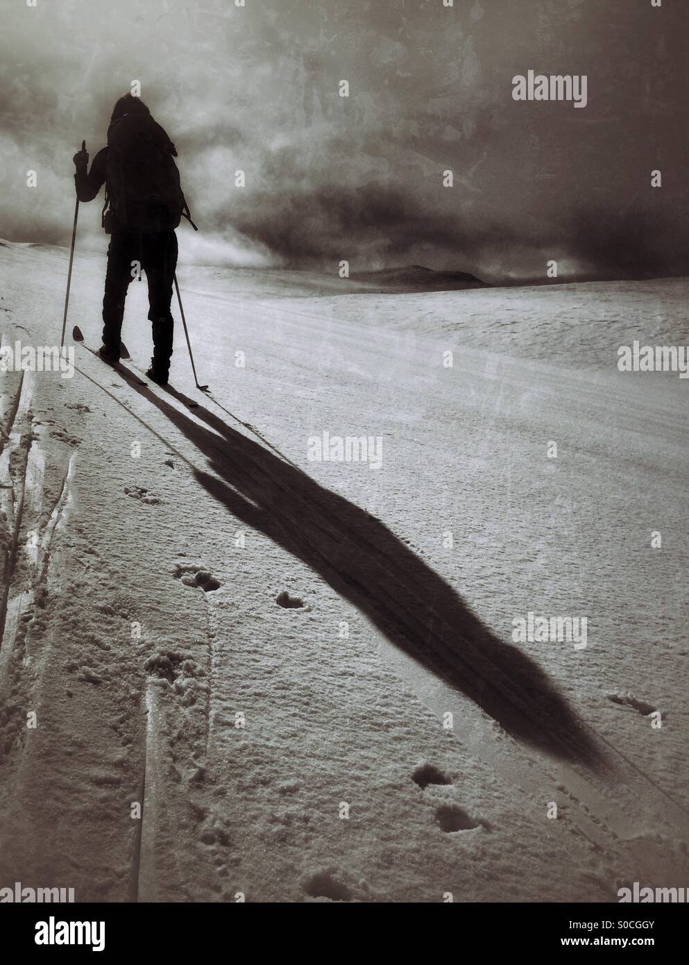 Cross-Country skiing over Hardangervidda, Norway, casting a long shadow in the snow. - Stock Image